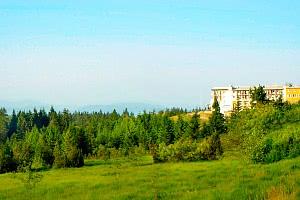 Grindenfest im Wellness-Hotel im Schwarzwald