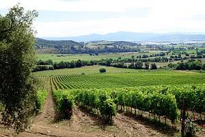Badische Weinstrasse wird 60