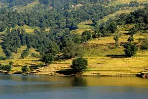 Reiseziel Nepal - Zwischen göttlicher Ordnung und Chaos