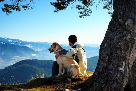Wellness mit Hund