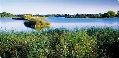 """Landschaftsschutzgebiet """"Lewitz"""""""