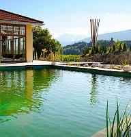 Sommerliche Erfrischung im heimeligen Naturbadeteich