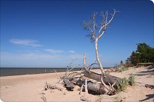 Golf von Riga / Baltische Ostsee