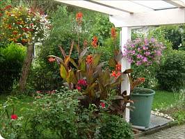 Garten Wellnesshaus