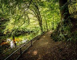 Wanderweg entlang der Oder