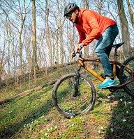 Bambus Bikes